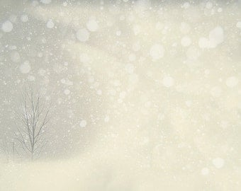 Winter Art: Winter's snowstorm Fine Art Photography Winter Tree Wall Art Grey White Snow Falling Bokeh Nature Photography