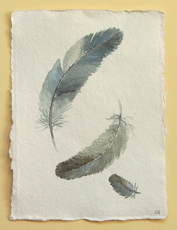 Feather watercolour original illustration painting study grey feathers