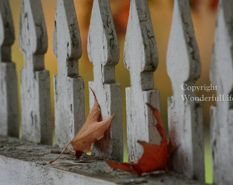 Autumn in New England - Set III - Four Photo Note Cards