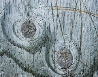Silver Wood, texture, lines, abstract, shiney, photograph