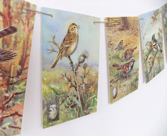 Birds Bunting upcycled from vintage Ladybird Book, A Third Ladybird Book of British Birds