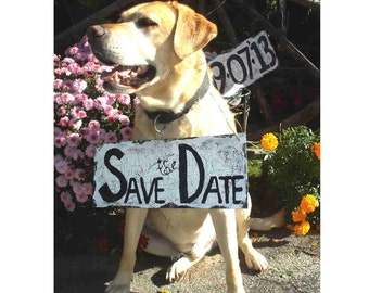 Save the Date wedding signs, rustic to shabby chic, for pets/horses, etc. to wear, or people to hold up