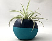 Single Air Plant Colorblock Container Pod -Turquoise // Navy Blue Planter (Harrisii) // Living Home Decor // Gifts Under 20