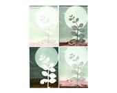 blank note card set of 4, original botanical monoprints