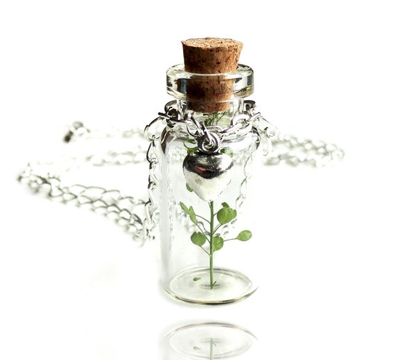 Make a Wish Nature Glass Bottle Vial Pendant Necklace (Get 10% OFF with COUPON CODE for Special Sale)