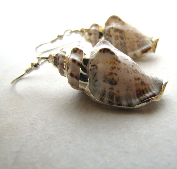 Sea Shell Seashell Earrings Conch Shell Ocean Beach Sea BellinaCreations Bellina Creation