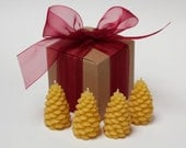 """Gift Wrapped - Beeswax Candle Collection - """"Pine Cone 4 Pack"""" - by Pollen Arts -"""