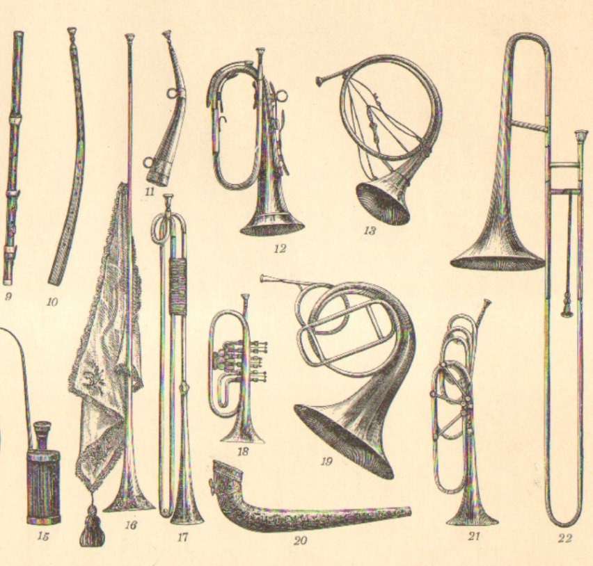 Pictures With Names Of Musical Instruments | Search ...