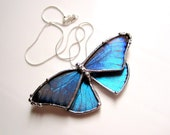 Real Blue Morpho Butterfly Necklace