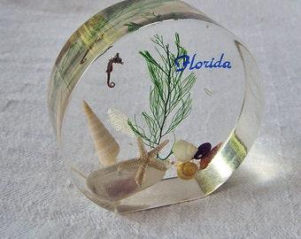 Vintage Florida Seashore Souvenir Paperweight