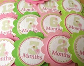Greens & Pinks Elephant Collection: Monthly Tags Use for photo banners, Scrapbooking