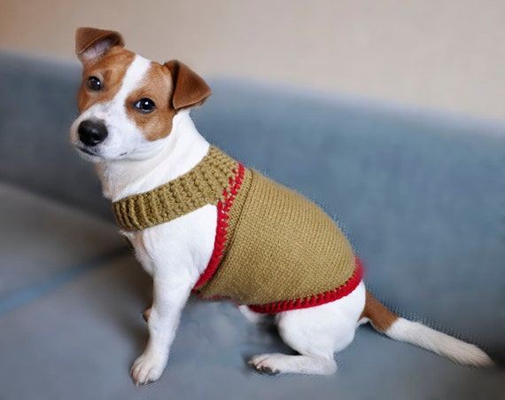 Knitting Pattern For Xs Dog Sweater : Knitted Mustard and Red Dog Sweater XS size / by ...