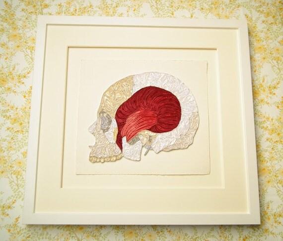 Quilled skull Fine    art    anatomical    diagram    framed quilled