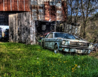 Fine Art Print of an Abandon Ford mustang sits forgotten by an old barn