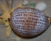 12 Carved Cowrie Shell with The Lord's Prayer - Great Communion or Baptism Favor