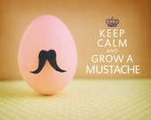 Keep Calm and Grow A Mustache. Fine Art Photography. Humor Print. Pink Egg. Size A4