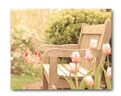 Pretty Landscape photo,  bench photo, pink tulip, art  print, wooden bench, peaceful, serenity, peach, bright, home decor, cottage, artwork - semisweetstudios
