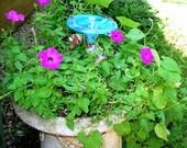 CONTAINER GARDENING, Butterfly Feeder, stained glass,  AQUA, copper, garden stake, Garden Art
