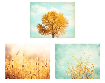Photo Set, Set of 3 Prints, fall tree gold blue mint nature photography autumn yellow wall art set light teal turquoise colorful 11x14, 8x10