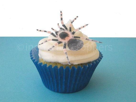 EXCLUSIVE - Edible Spiders - Cupcake Toppers - Cake Decorations - For Him