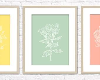 Botanical Set Art Print / Choose from Six Species / 8x10 / Wall Art Poster