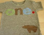 green brown and light blue Tshirt Bear Detail Birthday shirt Customize colors Boys Girls Organic Blend Birthday Tee first second etc birthda