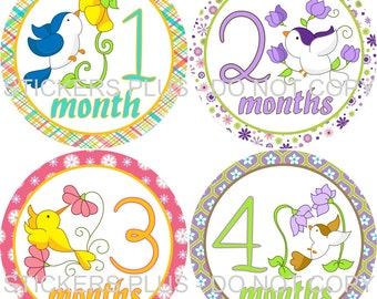 Baby Girl Monthly Milestone Stickers    - Birds and Flowers Pink Green Purple Yellow - 1-12 Months - Shower