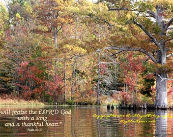 Autumn Trees at Chickahominy Lake with Bible Verse - Chickahominy Lake - Providence Forge, Virgina
