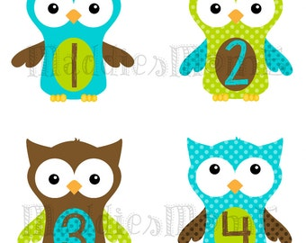 Monthly Baby Boy Stickers Baby Month Stickers, Monthly Bodysuit Sticker, Monthly Stickers Owls (Oscar)
