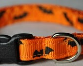 """Bats - 3/8"""" Adjustable Cat Collar"""