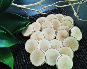 "50  2"" Natural White birch  Tree slices - Birch discs - Birch logs - Crafts - gift tags - DIY projects- Name tags - Holiday ornaments"