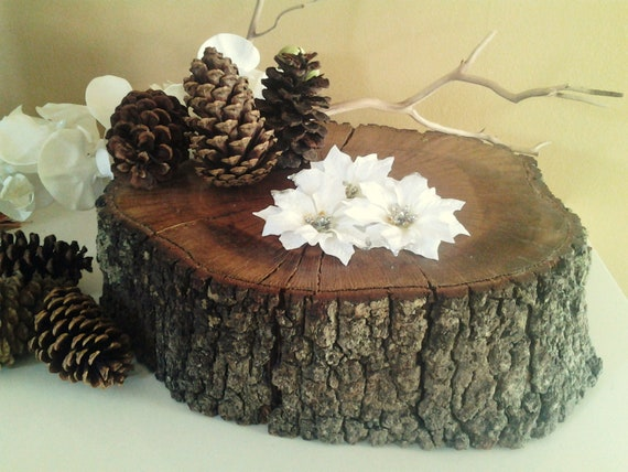 13 rustic oak tree trunk slice rustic wedding decor for Tree trunk slice ideas