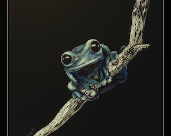 Blue Tree Frog, Frog on a Branch, Whimsical Scratchboard - Artist Print