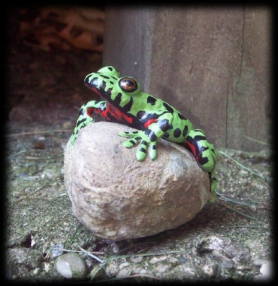 Oriental Fire Bellied Toad, hand sculpted and painted on a rock