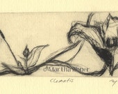 "Flower Drypoint Print ""Clematis"""