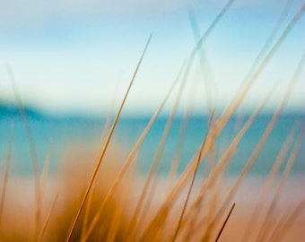 Photography print - beach photography Fine art photography print 8x8 -  nautical decor summer beach photo ocean photograph - sand dunes tea