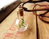 Jar Necklace Baby Tree in Miniature Jar on Leather Cord For Him or Her