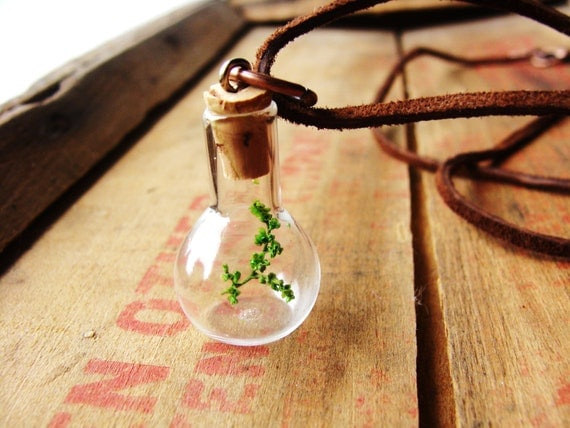 Jar Necklace, Tree Necklaces, Terrarium Necklace, twig, vial, gift for him, green plant jewelry, real moss necklace, terrarium earrings