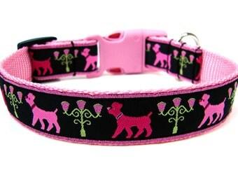 """Pink Poodle Dog Collar 1"""" Pink Dog Collar"""