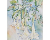 Nothing Good Gets Away - Giclee print pastel white Angel Trumpet blossoms