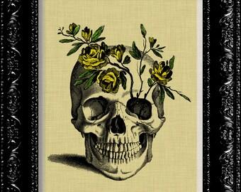 Flower Skull Art