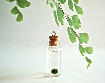 Super Mini Marimo Ball in Miniature Glass Bottle with Cork and Screw Eye / Mini Live Plant Jewelry, DIY Jewelry Vial, DIY Glass Bottle Charm