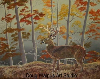 Whitetail Deer Print, Art Print, Acrylic, Wildlife Art, Autumn Scene, Animal Wildlife, Wall Decor, Home Decor, Gifts, Hunting