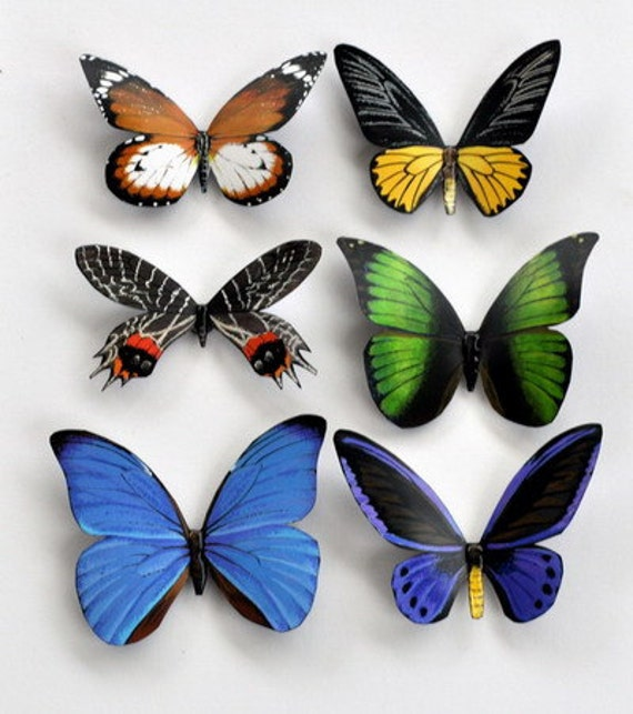 Butterfly Magnets Insects Set of 6 Refrigerator Magnets, kitchen Magnets, Handmade