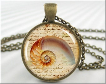 Seashell Art Pendant, Resin Charm, Ocean Beach Jewelry, Sea Life Picture Necklace, Beachcomber Gift, Round Bronze, Gift Under 20 (074RB)