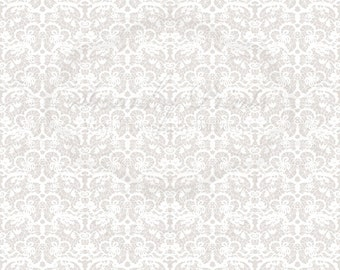 NEW 6ft x 6ft Vinyl Photography Backdrop / White Lace