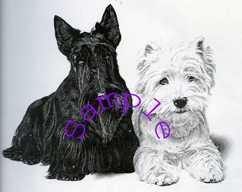 Digital Download-Black and White Scotty Dogs