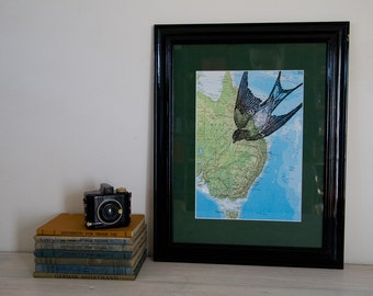Framed Map Print - Diving Bird Print on Vintage Map of Australia
