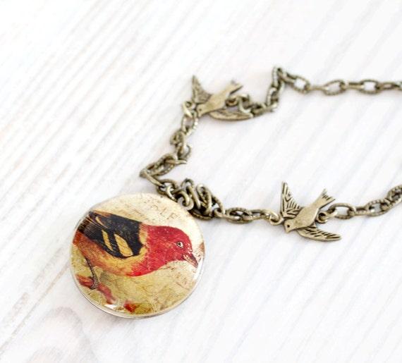 Bird bronze locket necklace - Shabby Chic