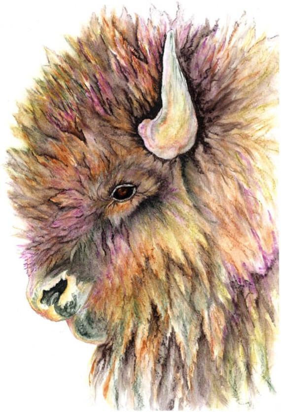 Watercolor Painting Returning Buffalo By Nightsightart On Etsy